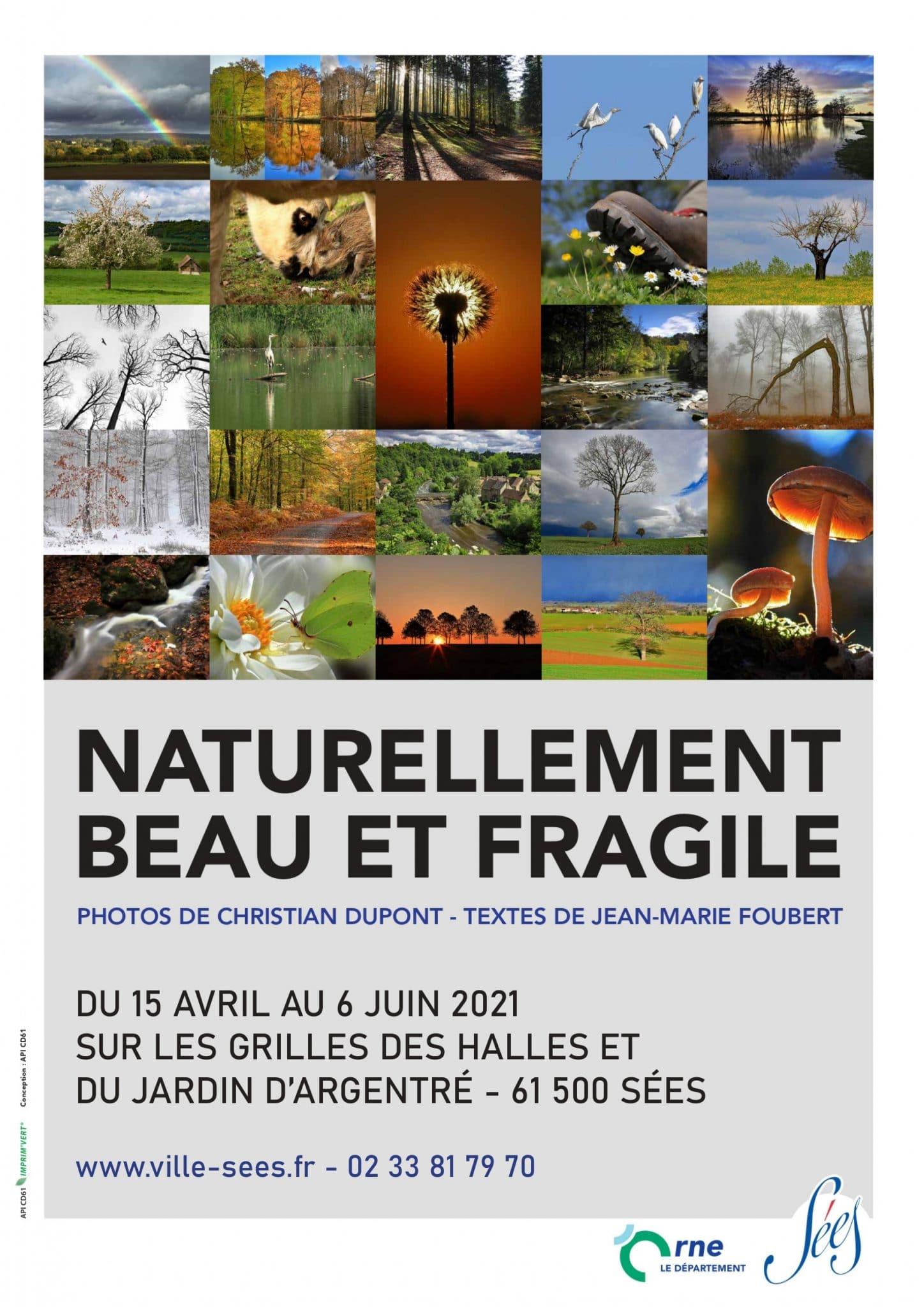 EXPOSITION NATURELLEMENT BEAU ET FRAGILE